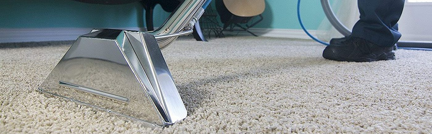 Eco Clean Carpet Cleaning Los Angeles Ca Residential